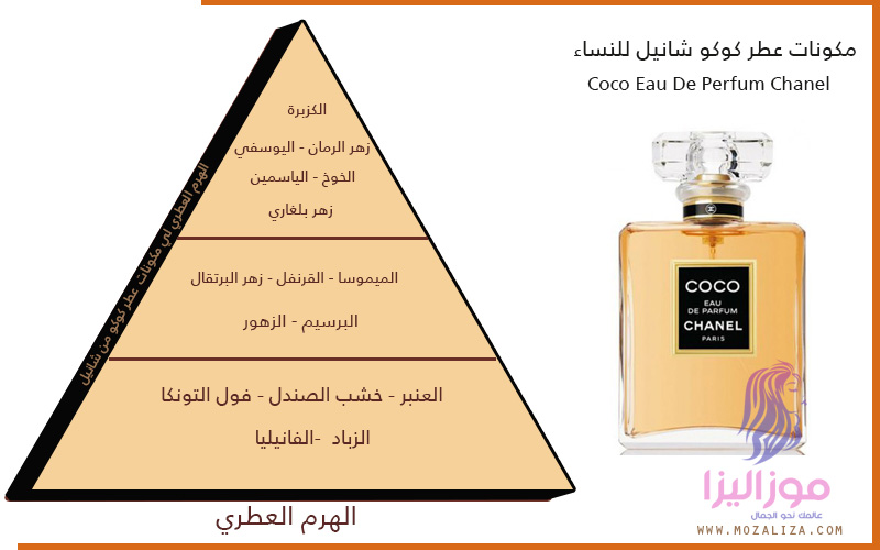 3254aa6aa عطر كوكو شانيل الأصلي للنساء Coco Eau de Parfum Chanel | موزاليزا